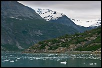 Ice-chocked cove in Tarr Inlet. Glacier Bay National Park, Alaska, USA. (color)