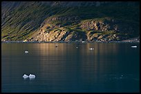 Icebergs and spot of sunlight on slopes around Tarr Inlet. Glacier Bay National Park, Alaska, USA. (color)