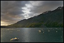 Icebergs in Tarr Inlet, sunset. Glacier Bay National Park, Alaska, USA. (color)