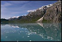 Icebergs and reflections in Tarr Inlet. Glacier Bay National Park, Alaska, USA.
