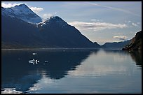 View looking out Tarr Inlet in the morning. Glacier Bay National Park, Alaska, USA. (color)