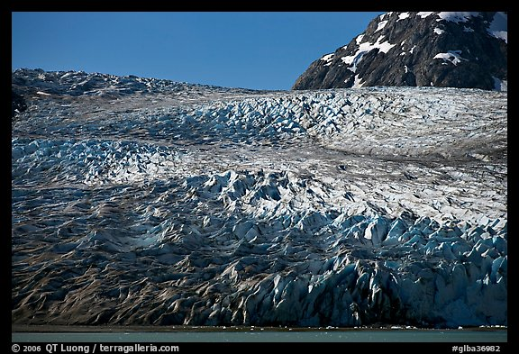 Reid Glacier. Glacier Bay National Park (color)