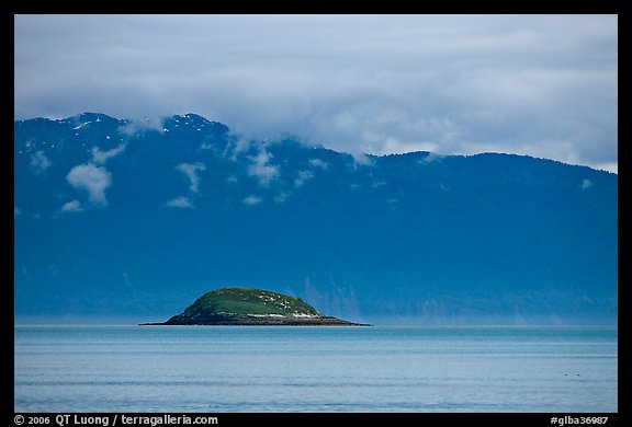 Green Island in blue seascape. Glacier Bay National Park, Alaska, USA.