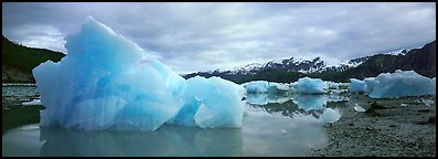 Blue beached icebergs. Glacier Bay National Park (Panoramic color)