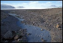 Animal tracks in ash, Valley of Ten Thousand smokes. Katmai National Park, Alaska, USA. (color)