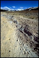 Valley with animal tracks in  ash, Valley of Ten Thousand smokes. Katmai National Park, Alaska, USA. (color)