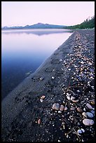 Bear tracks on the shore of Naknek lake. Katmai National Park, Alaska, USA. (color)
