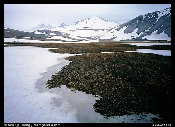 Melting snow and lichens, Valley of Ten Thousand smokes. Katmai National Park (color)