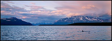 Lake and Mountains with pink clouds at sunset. Katmai National Park (Panoramic color)
