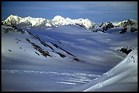 Aerial view of Harding icefield. Kenai Fjords National Park ( color)