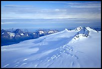 Aerial view of Harding icefield, fjords in the backgound. Kenai Fjords National Park, Alaska, USA. (color)