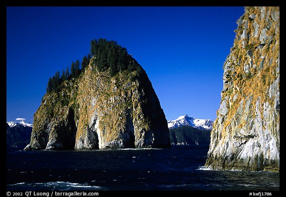 Islands in Aialik Bay. Kenai Fjords National Park (color)