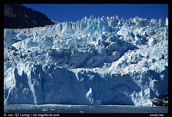 Front of Aialik Glacier. Kenai Fjords National Park (color)