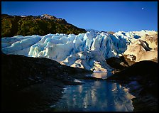 Frozen glacial pond and front of Exit Glacier, 2000, early morning. Kenai Fjords National Park ( color)