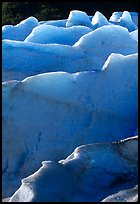 Ridges of blue ice at the terminus of Exit Glacier. Kenai Fjords National Park, Alaska, USA. (color)