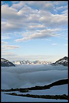 Sea of clouds and craggy peaks. Kenai Fjords National Park, Alaska, USA.
