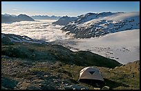 Camping in tent above glacier and sea of clouds. Kenai Fjords National Park ( color)