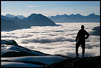 Hiker contemplaing a sea of clouds. Kenai Fjords National Park, Alaska, USA.