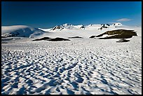 Snow cups and Harding icefield. Kenai Fjords National Park ( color)