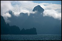 Peak emerging from the fog above bay waters. Kenai Fjords National Park, Alaska, USA.