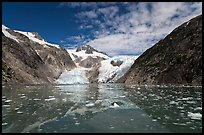 Northwestern Glacier and icebergs, Northwestern Lagoon. Kenai Fjords National Park, Alaska, USA.
