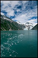 Northwestern Fjord. Kenai Fjords National Park, Alaska, USA.