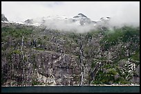 Wall of waterfalls streaming into Cataract Cove, Northwestern Fjord. Kenai Fjords National Park, Alaska, USA.