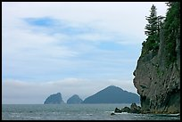 Chiswell Islands. Kenai Fjords National Park, Alaska, USA. (color)