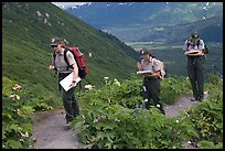 Women Park rangers on trail during a field study. Kenai Fjords National Park, Alaska, USA.
