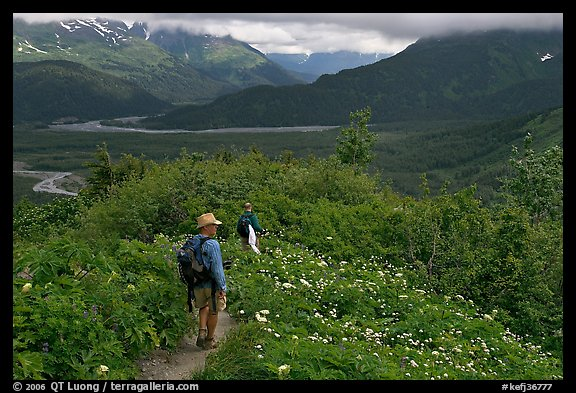 Hikers on Harding Icefield trail. Kenai Fjords National Park, Alaska, USA.