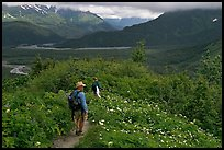 Hikers on Harding Icefield trail. Kenai Fjords National Park, Alaska, USA. (color)