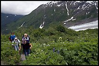 Women with child carrier backpacks on Harding Icefield trail. Kenai Fjords National Park, Alaska, USA.