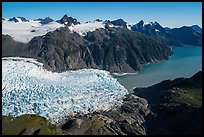 Aerial View of Holgate Glacier flowing into Holgate Arm. Kenai Fjords National Park ( color)