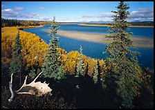 Antlers and bend of the Kobuk River, mid-morning. Kobuk Valley National Park, Alaska, USA. (color)