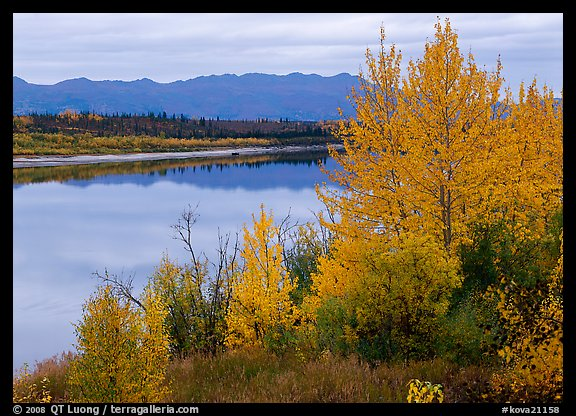 River, Warring Mountains, and fall colors at Onion Portage. Kobuk Valley National Park (color)