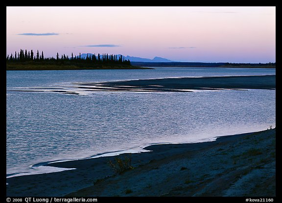 Sand bar shore, river, row of spruce trees,  and Baird mountains, evening. Kobuk Valley National Park (color)