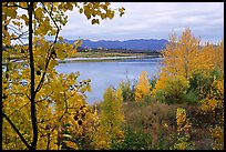 River, Warring Mountains, and fall colors at Onion Portage. Kobuk Valley National Park, Alaska, USA. (color)