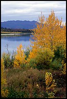 Kobuk River, Warring Mountains, and autumn colors, Onion Portage. Kobuk Valley National Park, Alaska, USA.