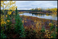 Pond near Kavet Creek. Kobuk Valley National Park, Alaska, USA. (color)