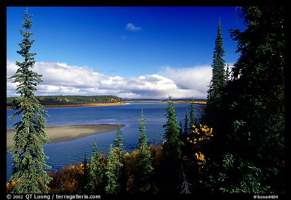 Bend of the Kobuk River, mid-morning. Kobuk Valley National Park, Alaska, USA.