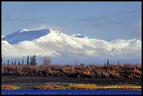 Baird mountains with a fresh dusting of snow, morning. Kobuk Valley National Park, Alaska, USA. (color)