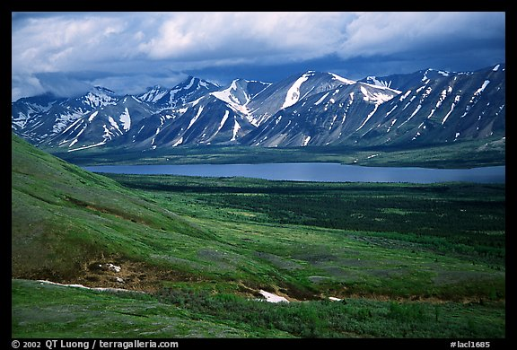 Verdant tundra, lake, and snowy mountains under clouds. Lake Clark National Park (color)