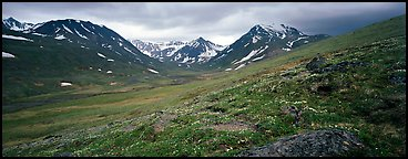 Summer mountain landscape with green tundra and wildflowers. Lake Clark National Park (Panoramic color)