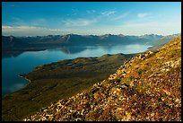 Tundra in autumn, Lake Clark from Tanalian Mountain. Lake Clark National Park ( color)