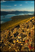 Lake Clark from Tanalian Mountain, late afternoon. Lake Clark National Park ( color)