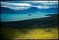 Aerial view of Lake Clark near Port Alsworth. Lake Clark National Park ( color)