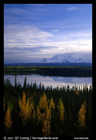 Mt Wrangell reflected in Willow lake, early morning. Wrangell-St Elias National Park (color)