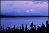 Mt Blackburn above Willow lake, sunset. Wrangell-St Elias National Park, Alaska, USA.