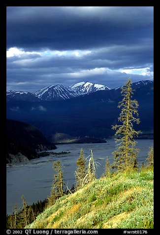 Chitina river under dark clouds. Wrangell-St Elias National Park, Alaska, USA.