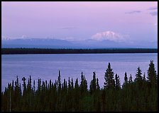 Wrangell range and Mt Blackburn above Willow Lake with pink sunset hues. Wrangell-St Elias National Park, Alaska, USA.